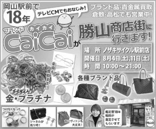CaiCaiT300801.jpg