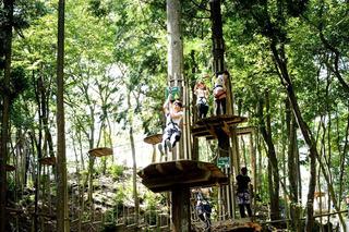 冒険の森01.jpg